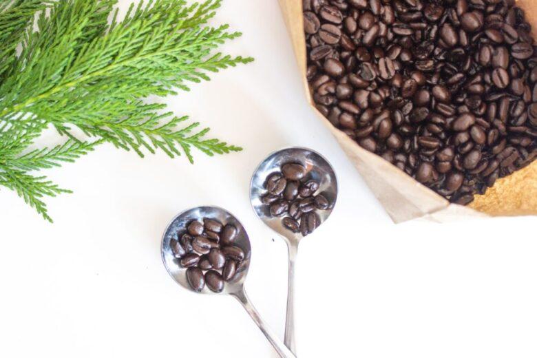 コーヒー 選び方